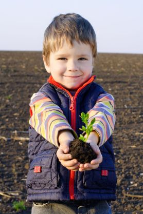 Little boy and plant